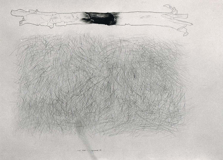 Kreski, linie, kije - Marek Chlanda